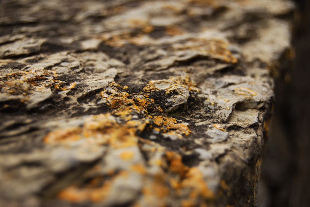 17 - grey, rock, yellow,